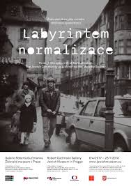 THROUGH THE LABYRINTH OF NORMALIZATION